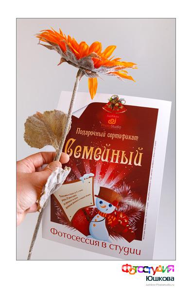 Подарочный сертификат на фотосессию и цветок