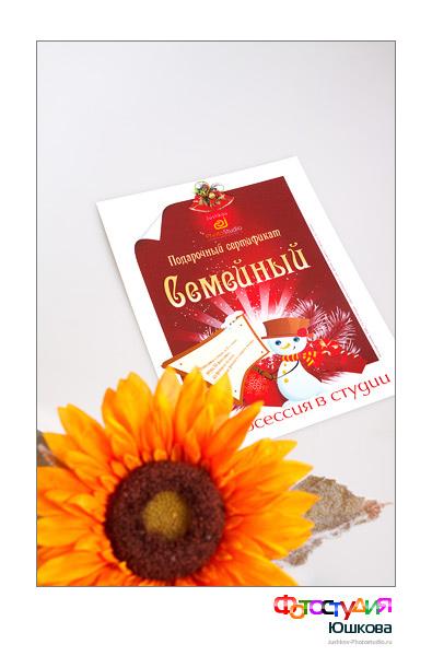 Сертификат на фотосъемку и цветок